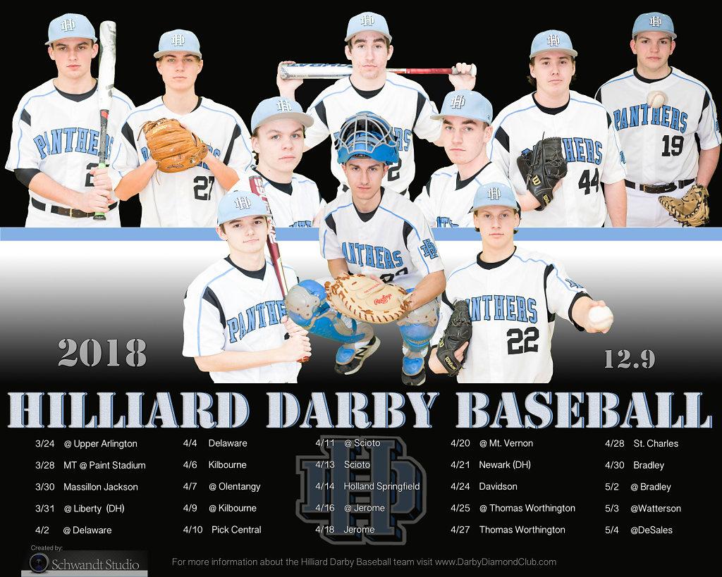 2018 Hilliard Darby Baseball Seniors